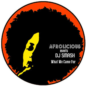 What+We+Came+For+(DJ+Smash+Remixes)+-+EP+(2015).jpg