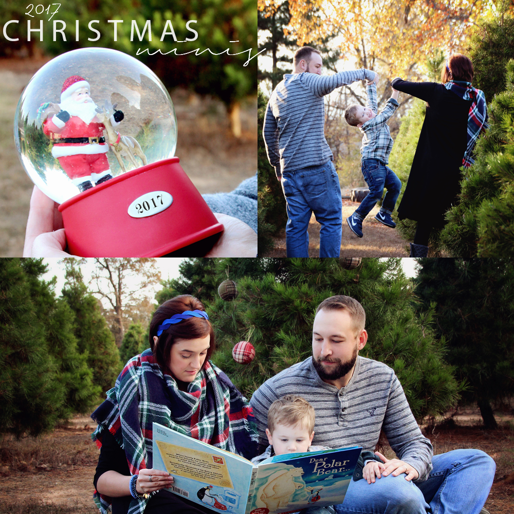 2017 Christmas mini sq.jpg