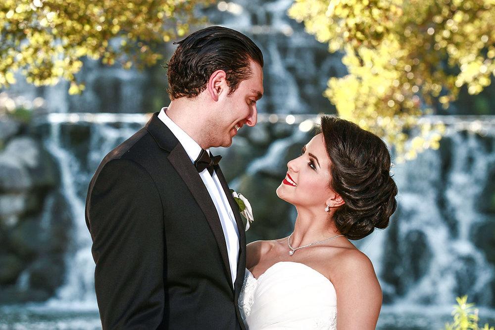 Wedding_Chicago_Ali_Hengameh_008.jpg