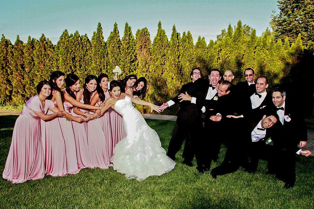 Wedding_Chicago_Ali_Hengameh_012.jpg