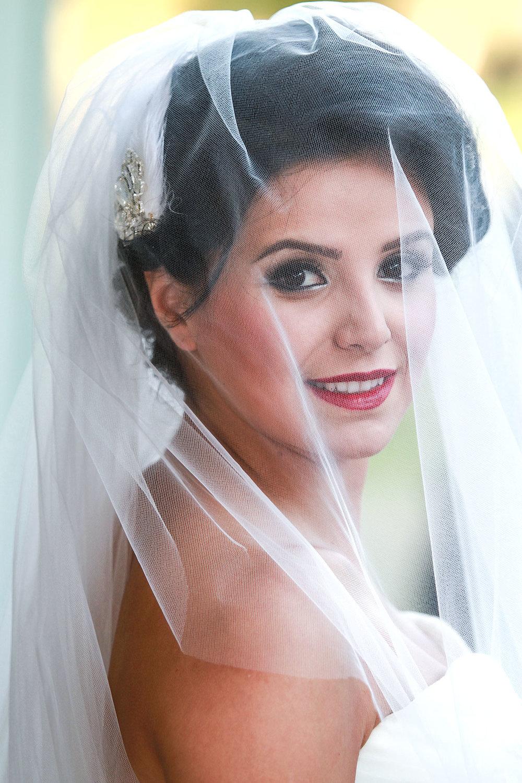 Wedding_Chicago_Ali_Hengameh_014.jpg