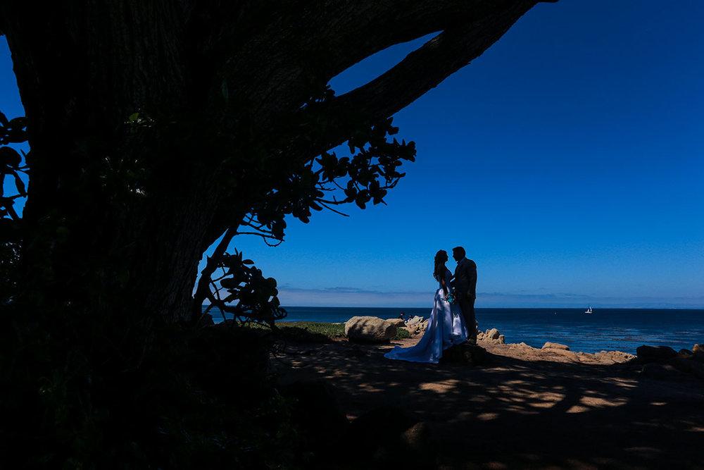 Wedding_SantaCruz_Chicago_Charles_Stapanie_001.JPG