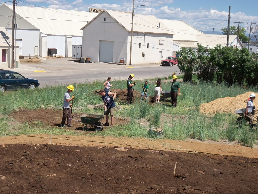 Volunteers hard at work removing grass to create the patches.