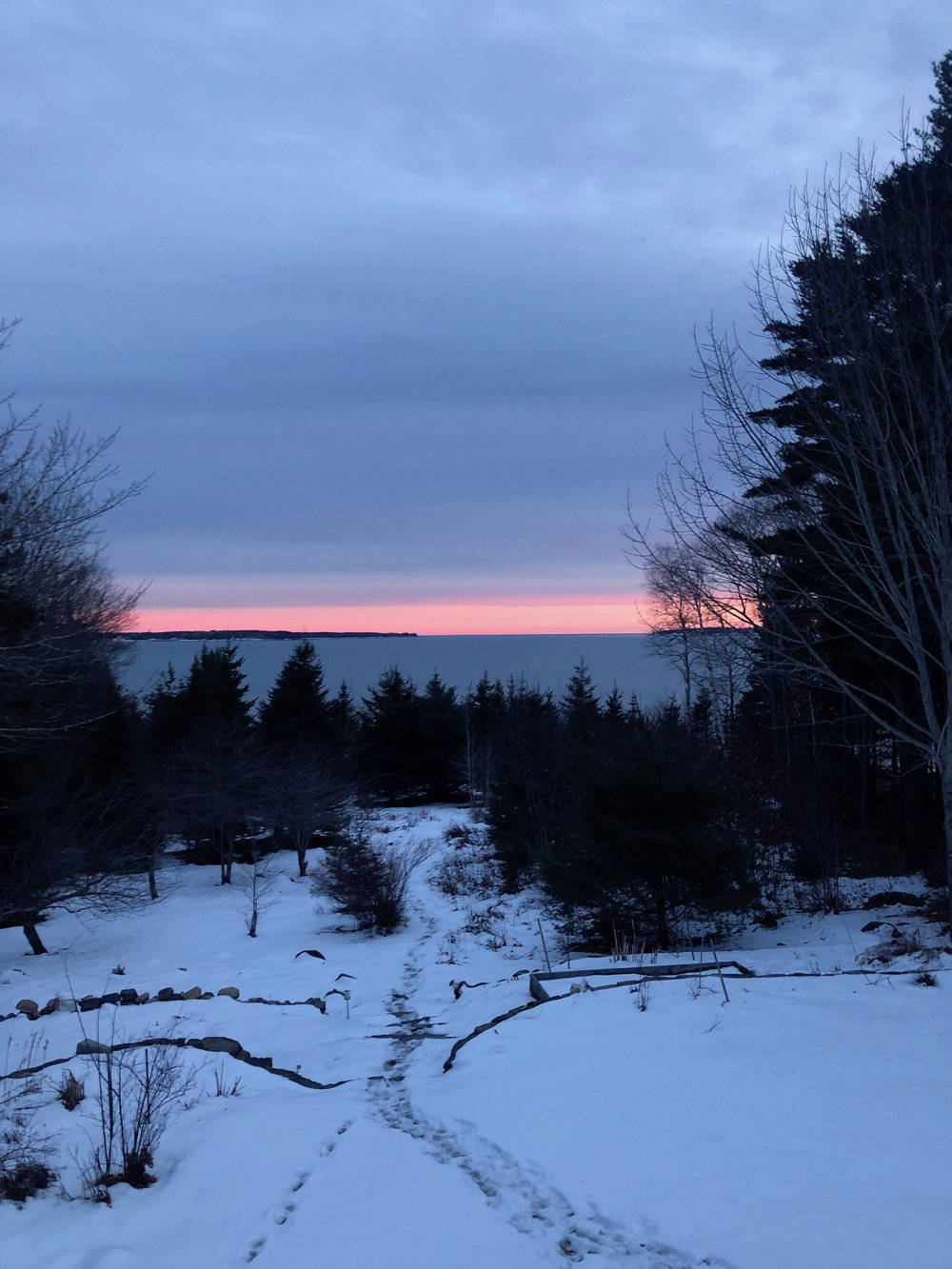 Maine coast on a winter evening (photo by Daniel Blaine).