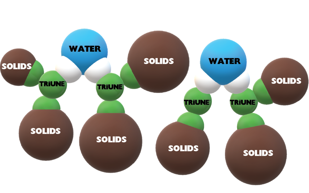 Triune molecules attach to the water and bring the water down through the solids; dispersing into the solids and bringing them  into suspension.