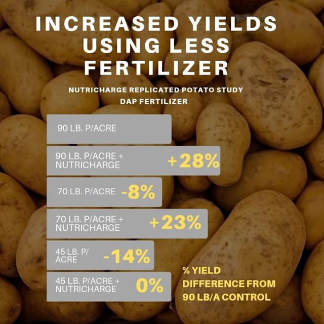 More compelling research demonstrating the effect of NutriCharge on phosphate fertilizer. Newly released phosphate efficiency technology enables increased  yields using less fertilizer.