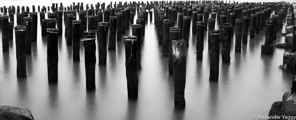 Black & White (5 of 5).jpg