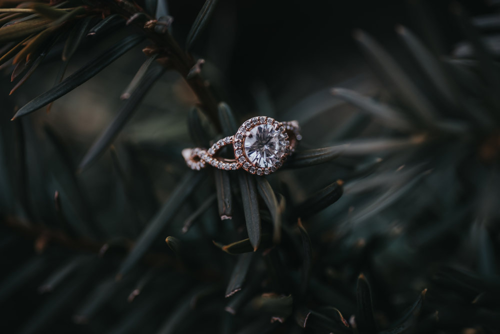 Kayla Schultz // LXC // I could photograph this ring everyday!