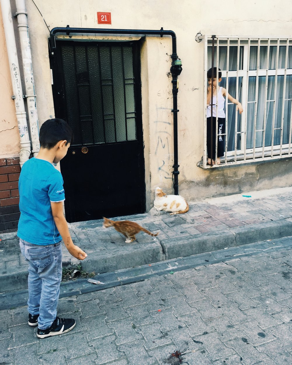 Kids and Cats - Balat, Istanbul.JPG
