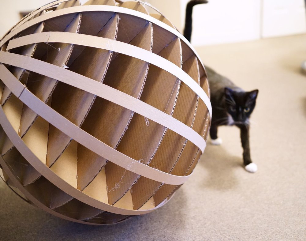 cat_sphere.jpg