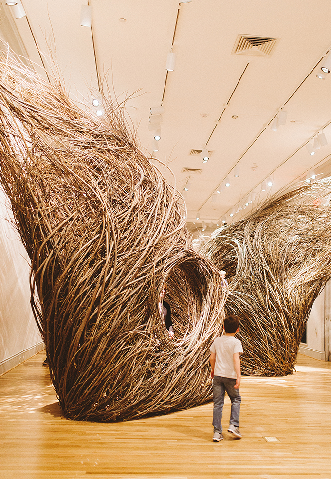 renwick-gallery-nests.jpg