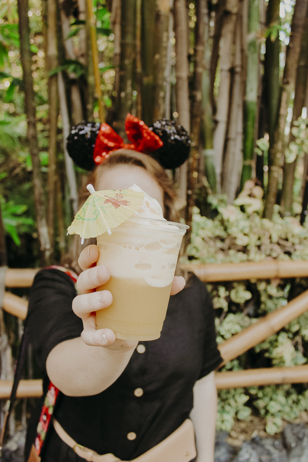 Disneyland-Travel-Diary-9.jpg