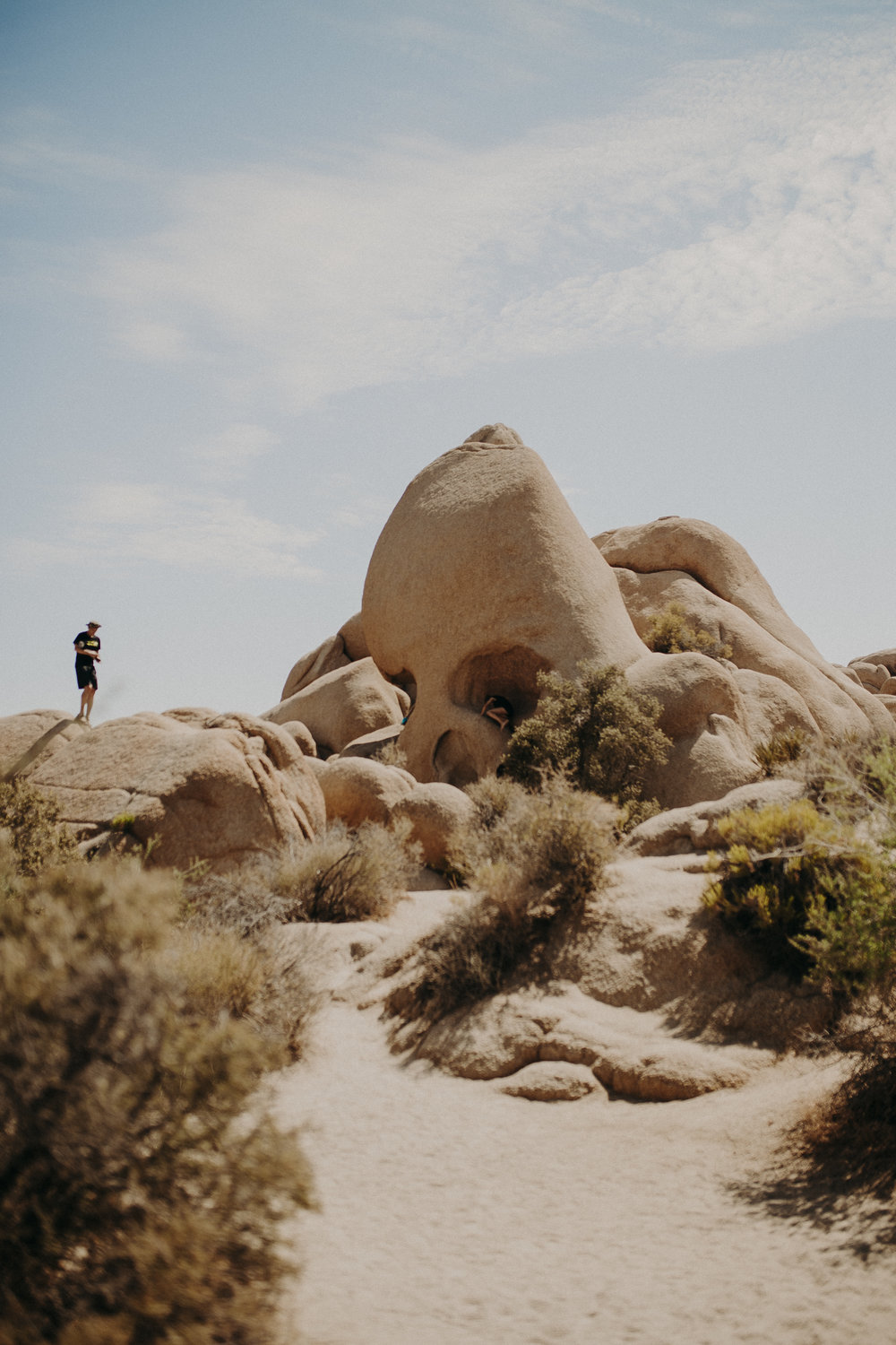Joshua-Tree-National-Park-11.jpg