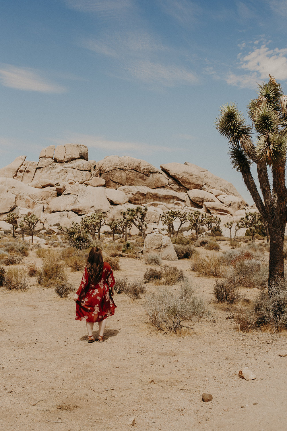 Joshua-Tree-National-Park-13.jpg