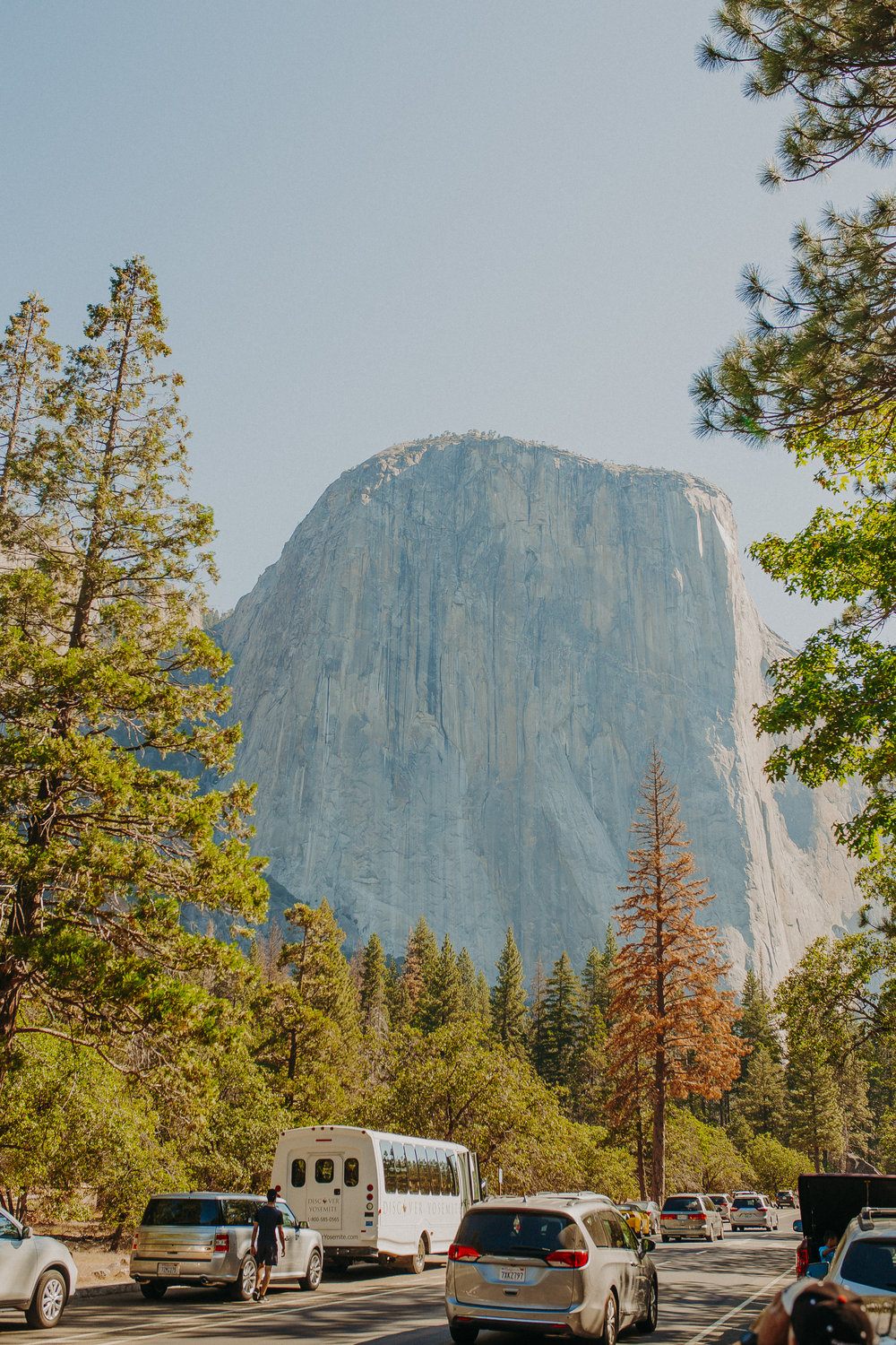 Visit-Yosemite-National-Park-Pictures-California-2.jpg