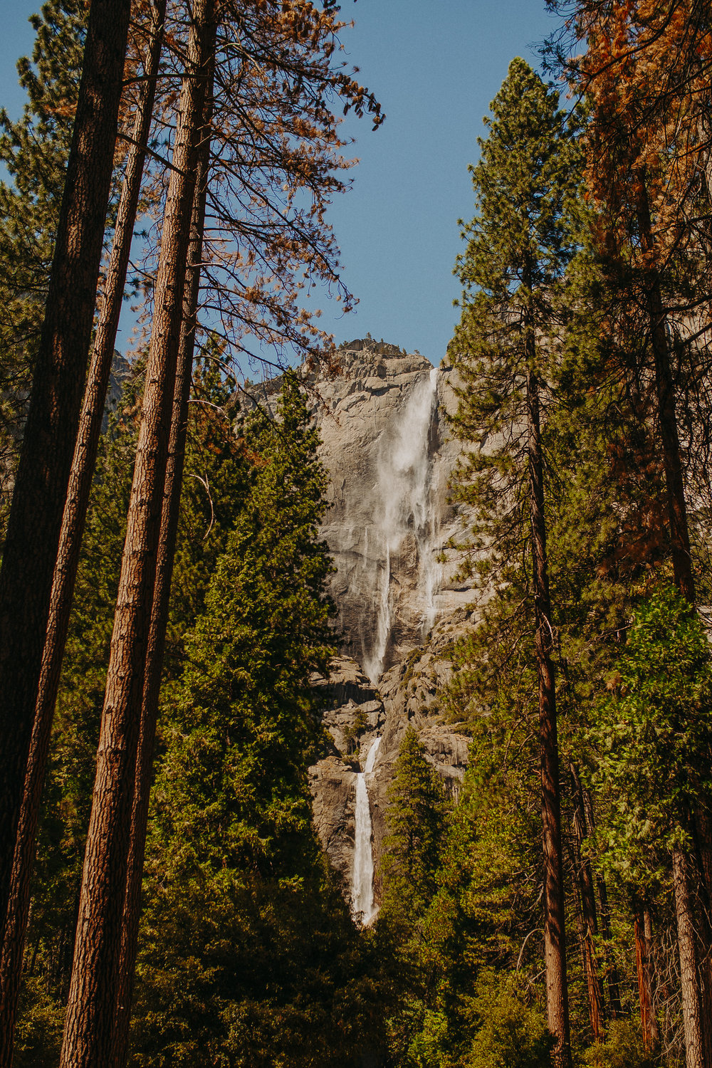 Visit-Yosemite-National-Park-Pictures-California-10.jpg