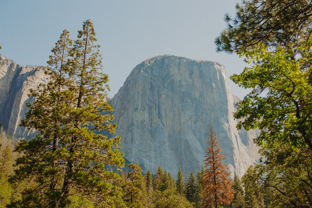 Visit-Yosemite-National-Park-Pictures-California.jpg