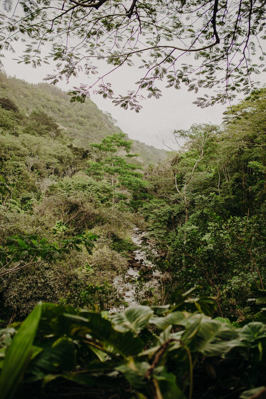 Hawaii-Solo-Traveler-Tips-13.jpg