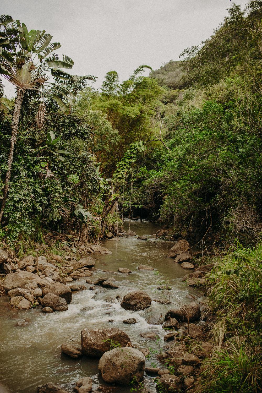 Hawaii-Solo-Traveler-Tips-14.jpg