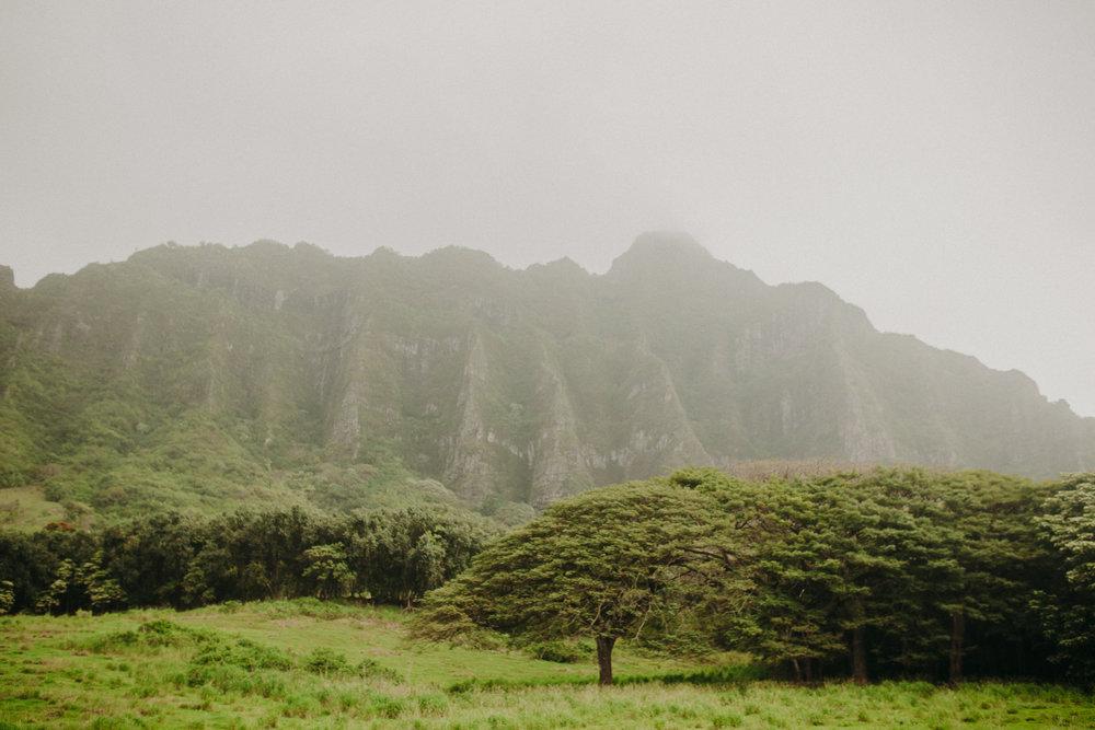 Hawaii-Kualoa-Jurassic-Park.jpg