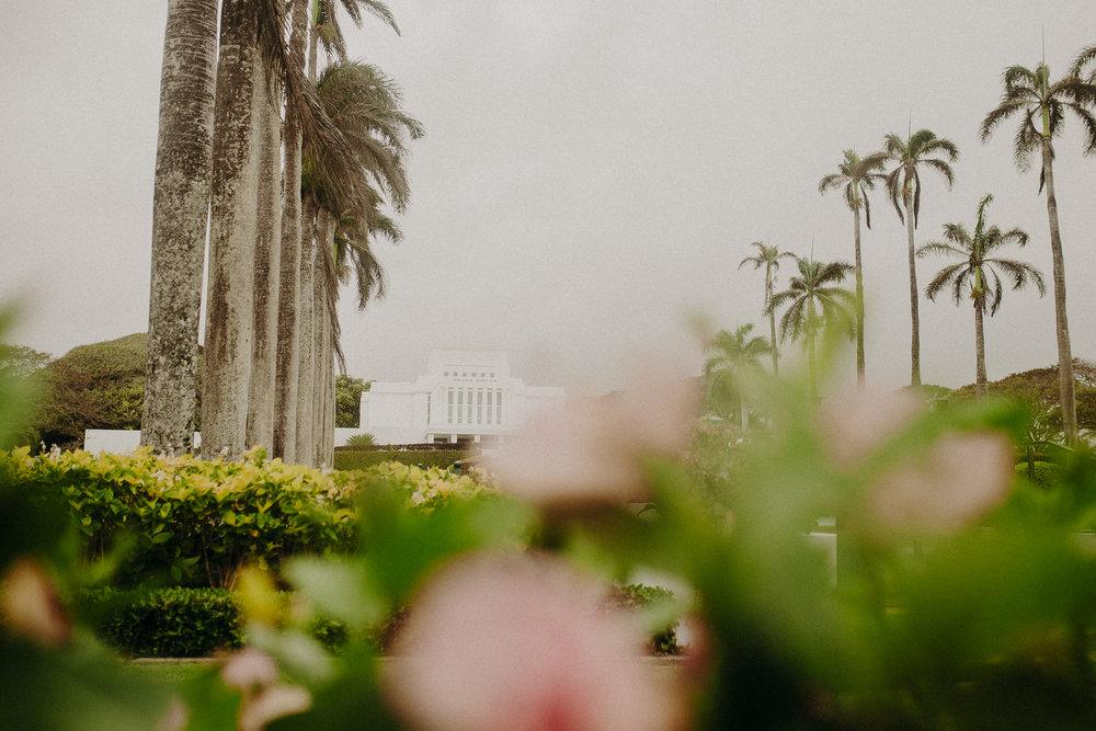 Hawaii-Solo-Traveler-Tips-16.jpg