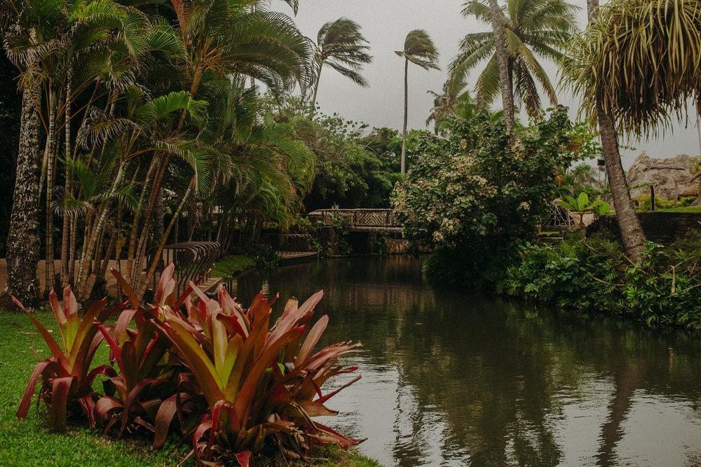 Hawaii-Solo-Traveler-Tips-29.jpg