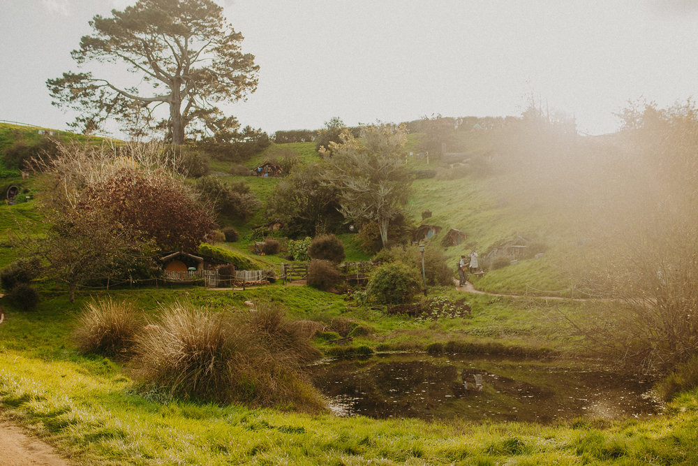 hobbiton-new-zealand-lord-of-the-rings-tour-5.jpg