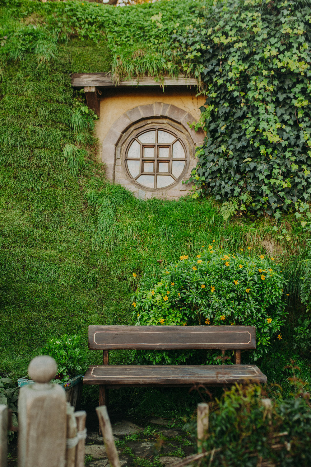hobbiton-new-zealand-lord-of-the-rings-tour-8.jpg