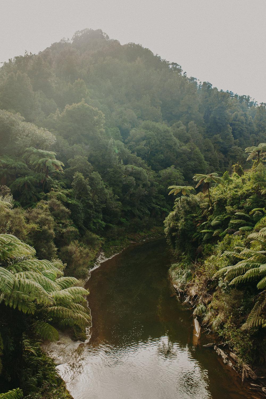 Forgotten-World-Highway-New-Zealand-11.jpg