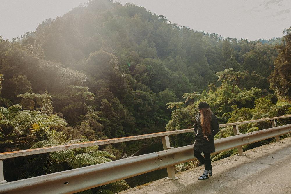 Forgotten-World-Highway-New-Zealand-14.jpg