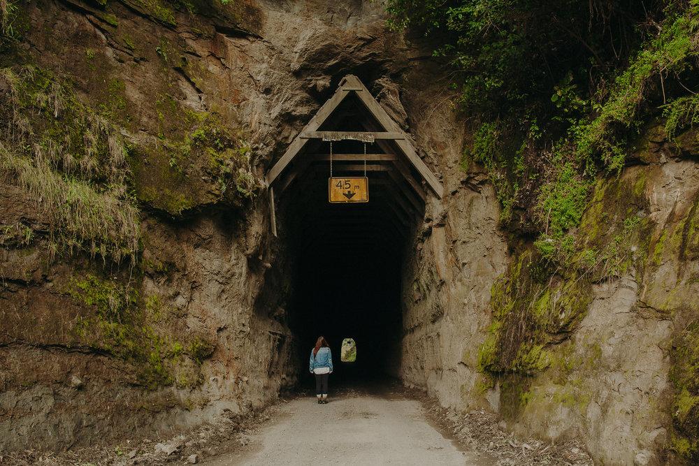 Forgotten-World-Highway-New-Zealand-22.jpg