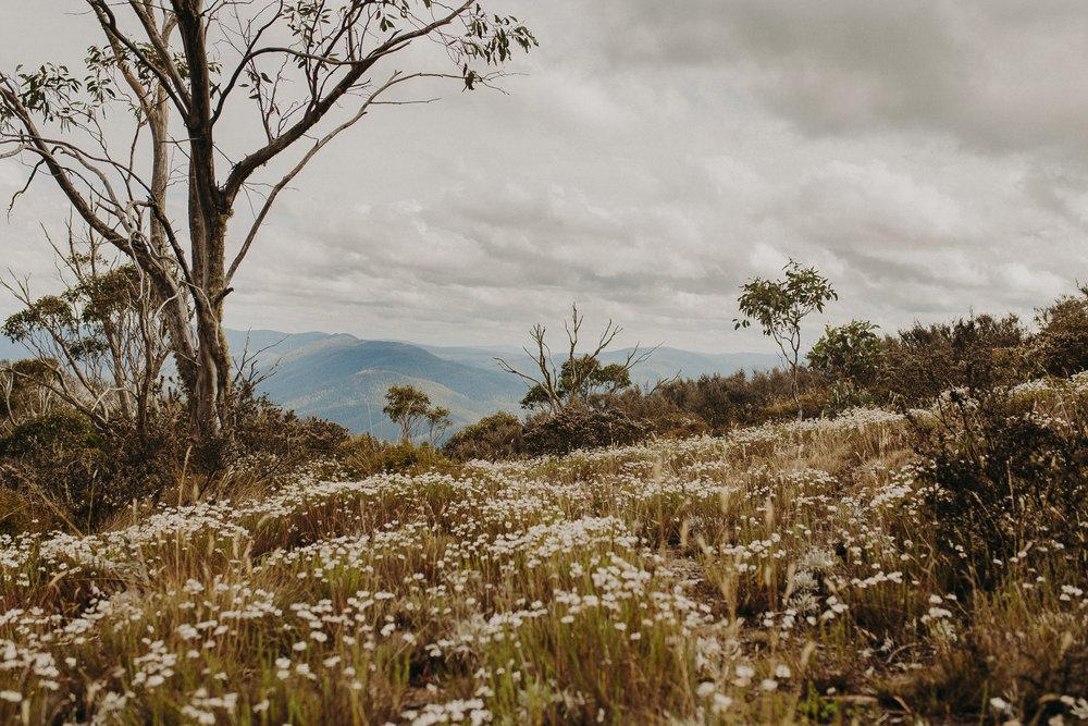 Namadgi-national-park-australia-14.jpg