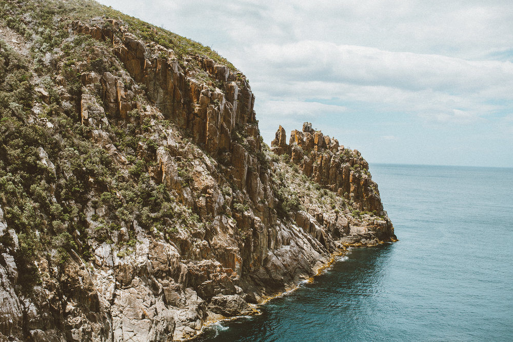 three capes track tasmania cape hauy hike-9.jpg