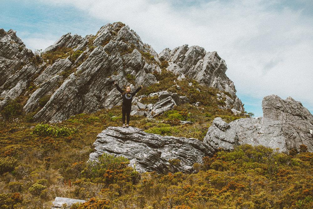 The Needles Hike in Southwest National Park Tasmania-24 resized.jpg