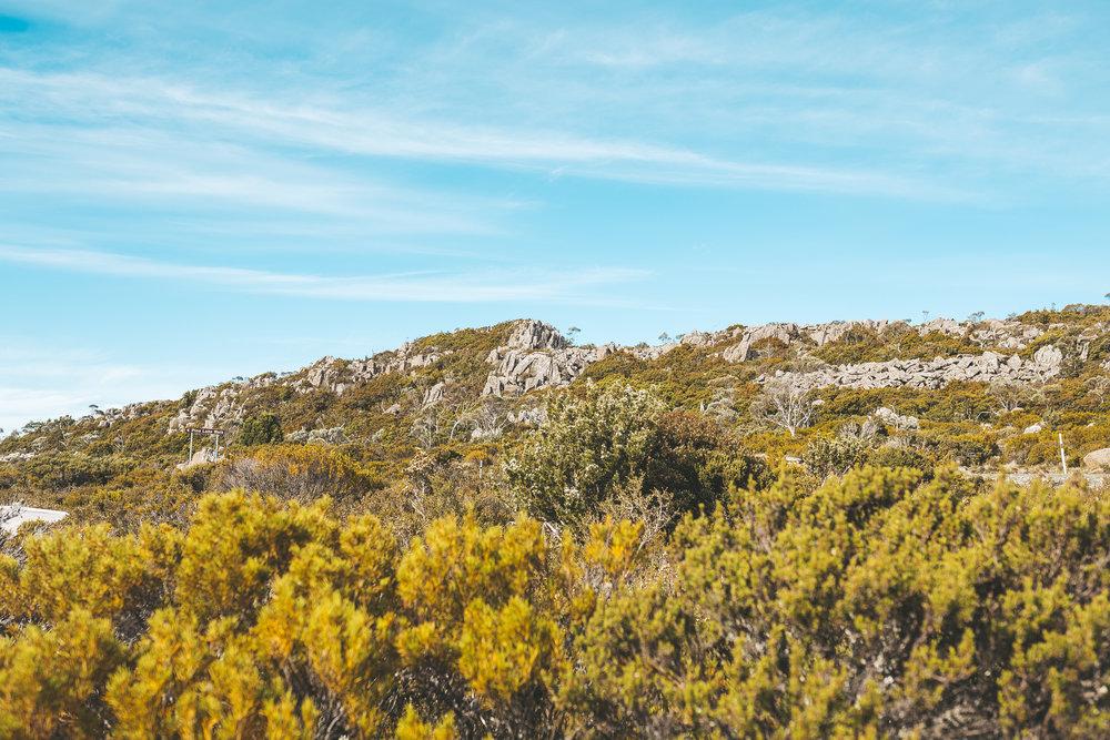 tasmania southwest national park mountains-14.jpg