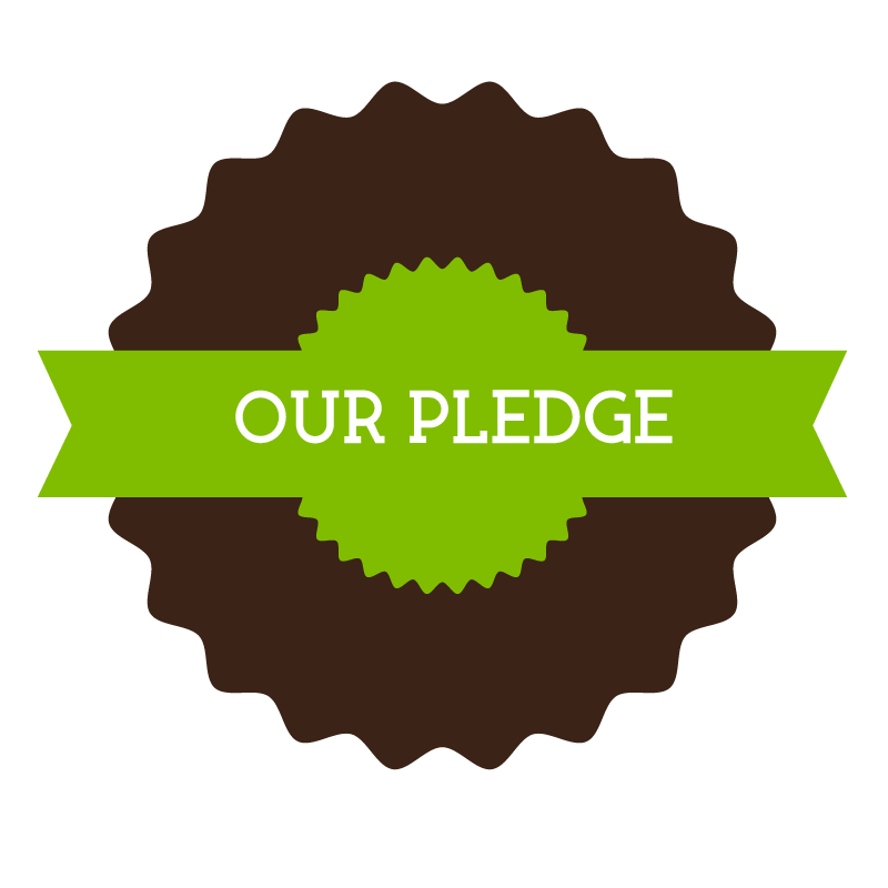 Our-Pledge.png