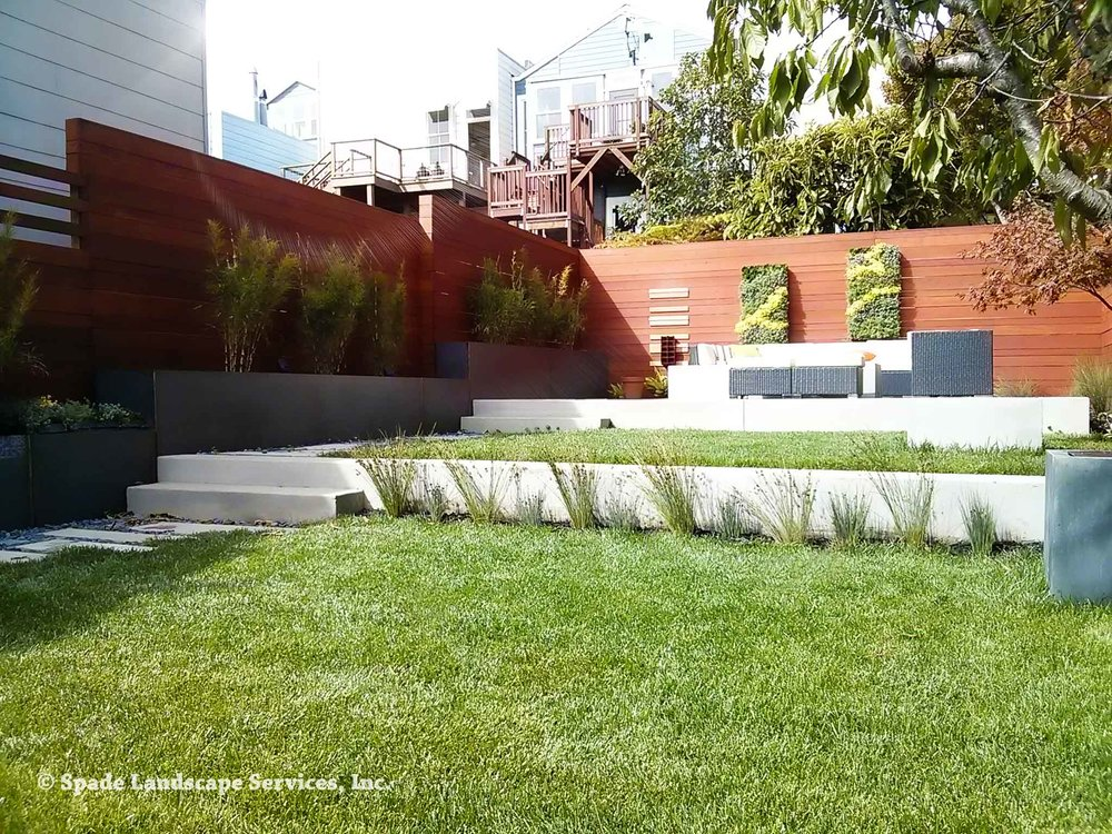 Modern Castro Backyard
