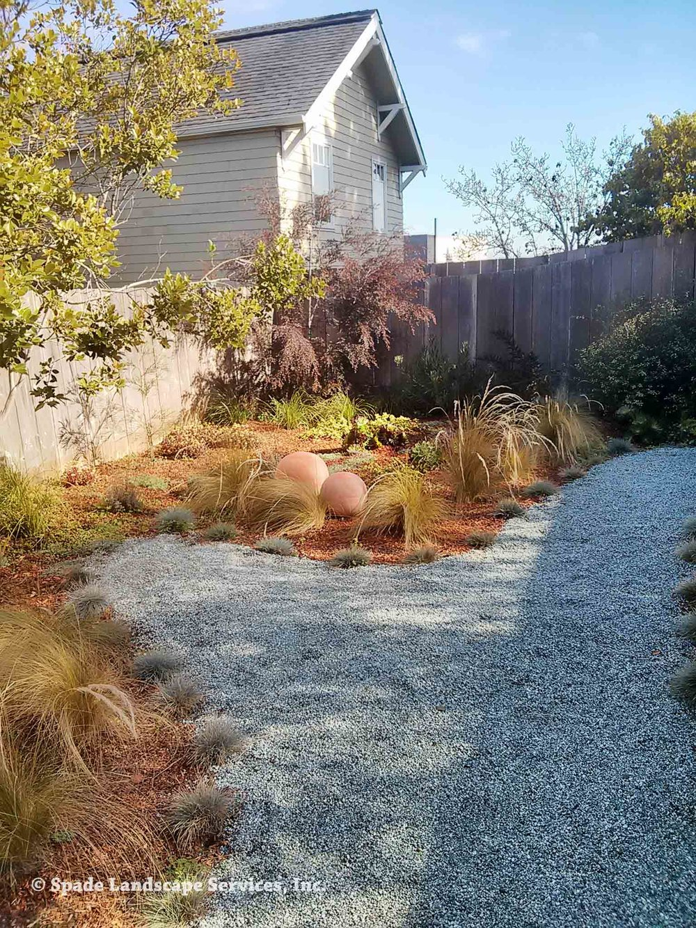 Newly Installed Landscape with Path