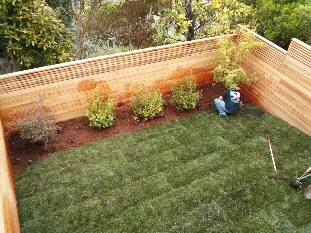Backyard-Complete-Renovation.jpg