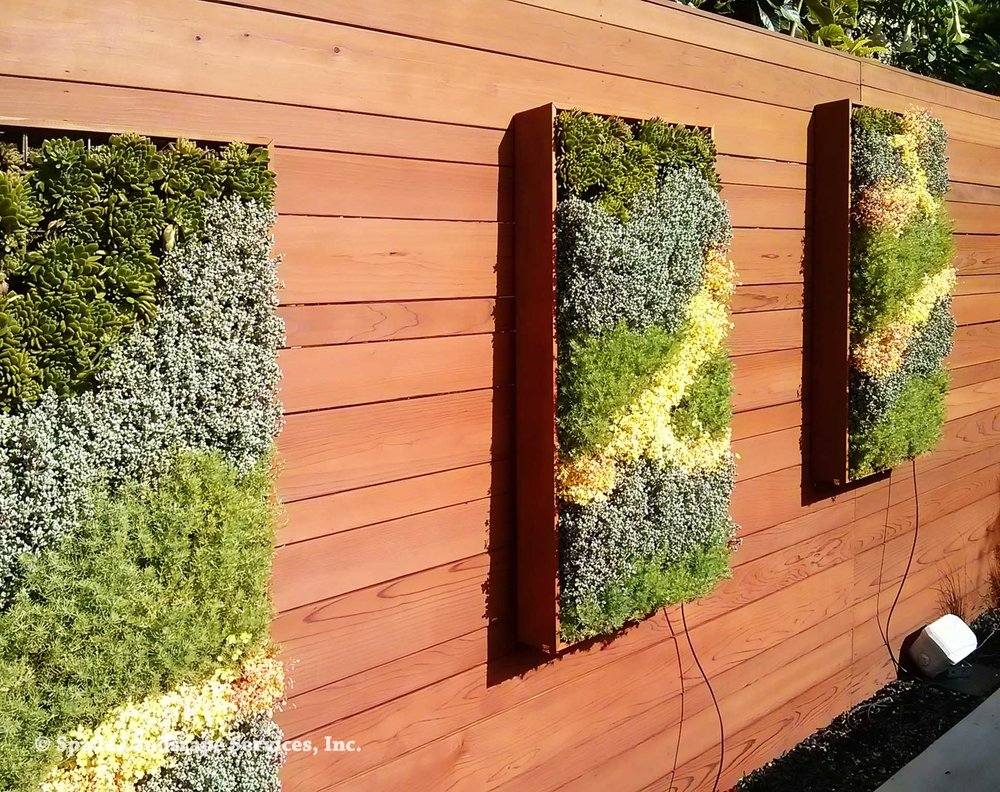Succulent Living Wall Panels