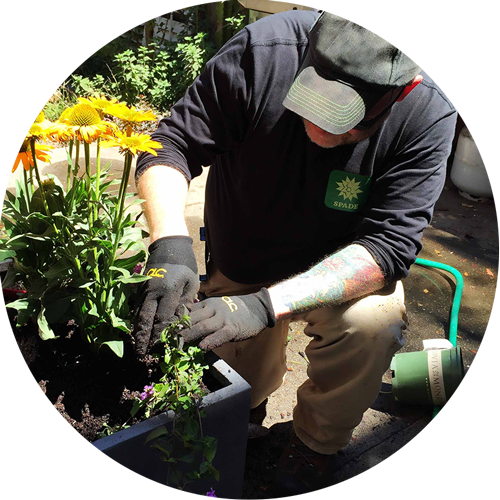 Ben Planting.jpg