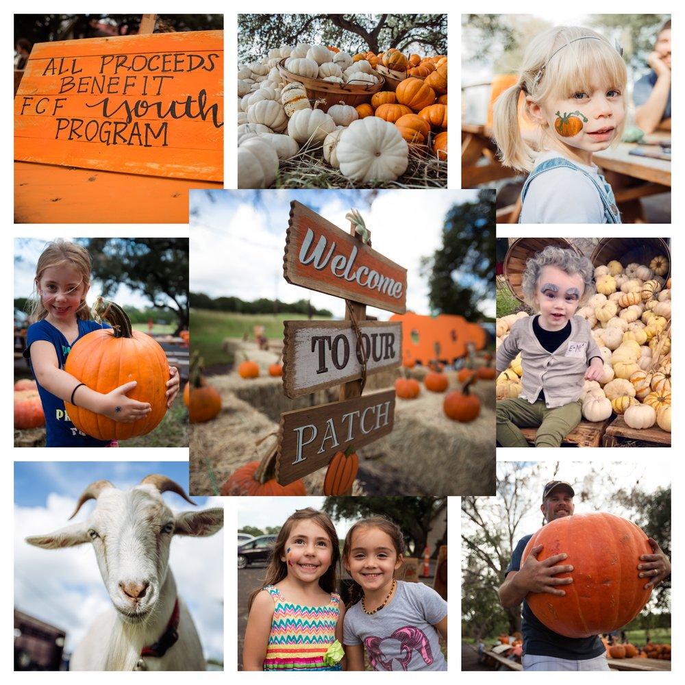 2018 In Pictures Pumpkin Patch.jpg
