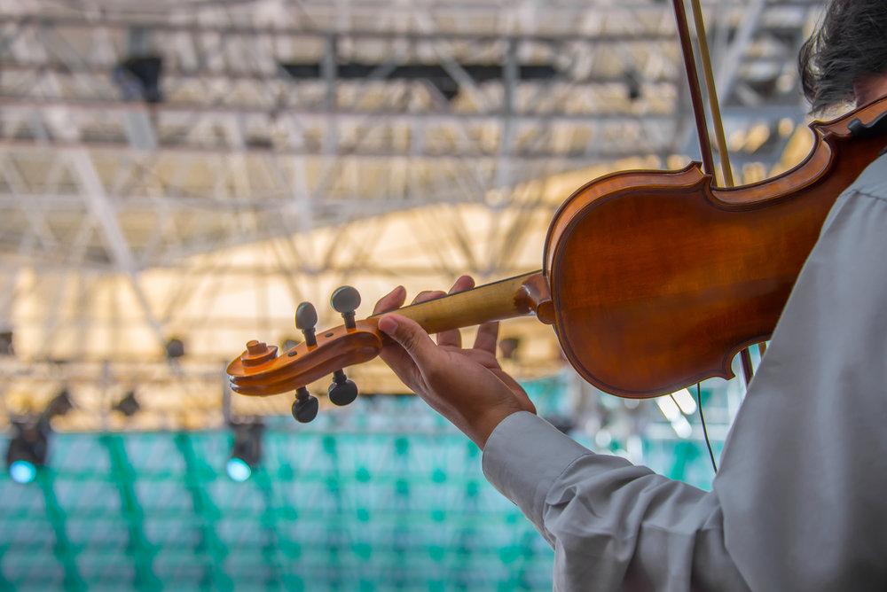 musica-de-viol-n_t20_plGPjN.jpg