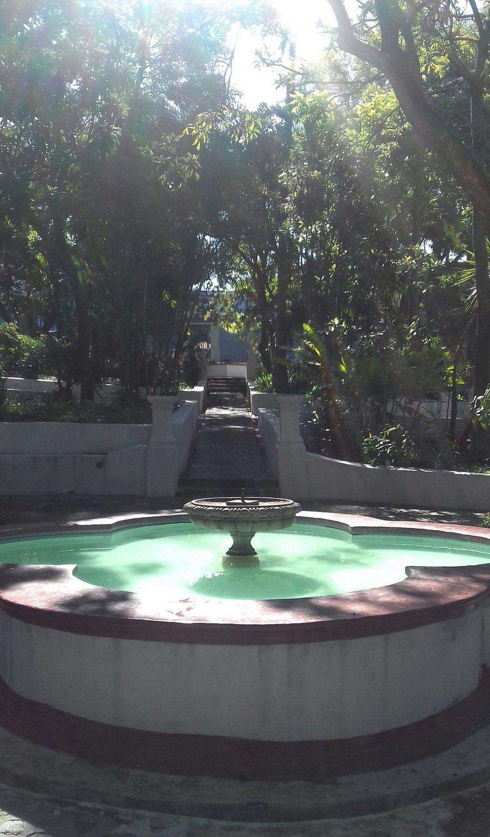 jardin_borda2017