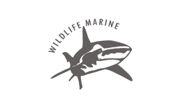 Wildlife Marine