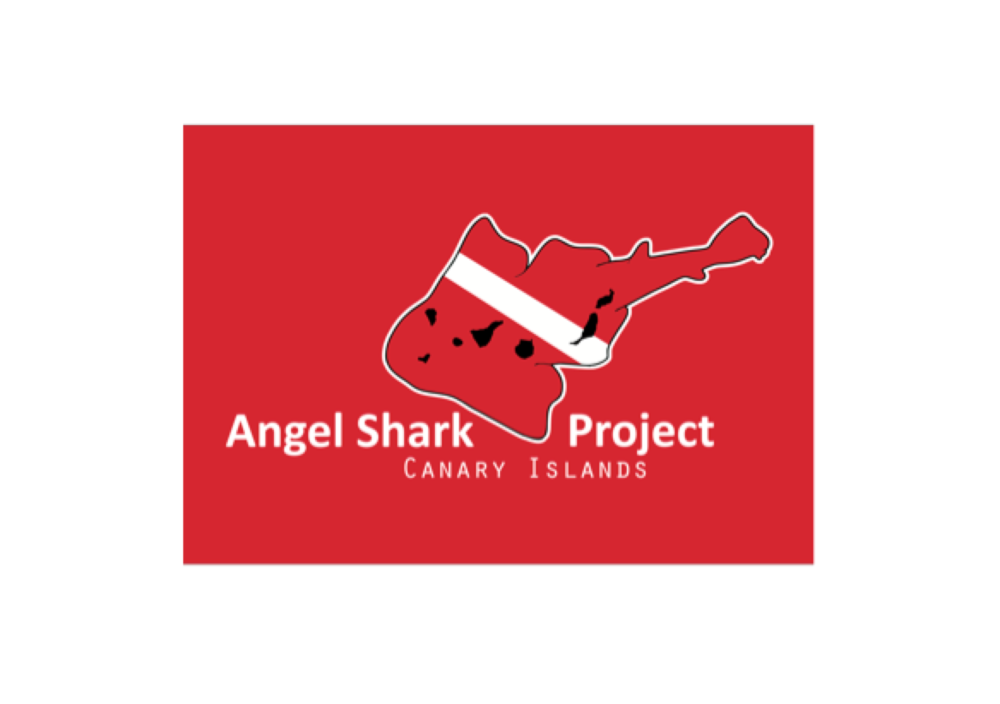 Angel Shark Project