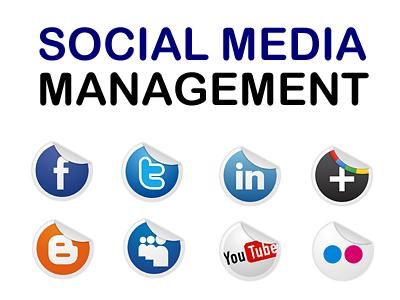 social-media-management (1).png