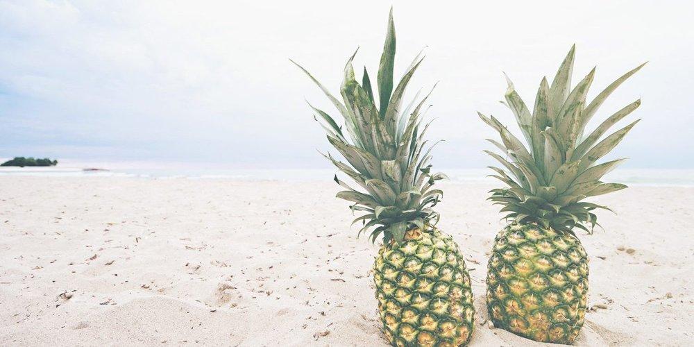 beach-1840512_1920-1-e1488342284338.jpg