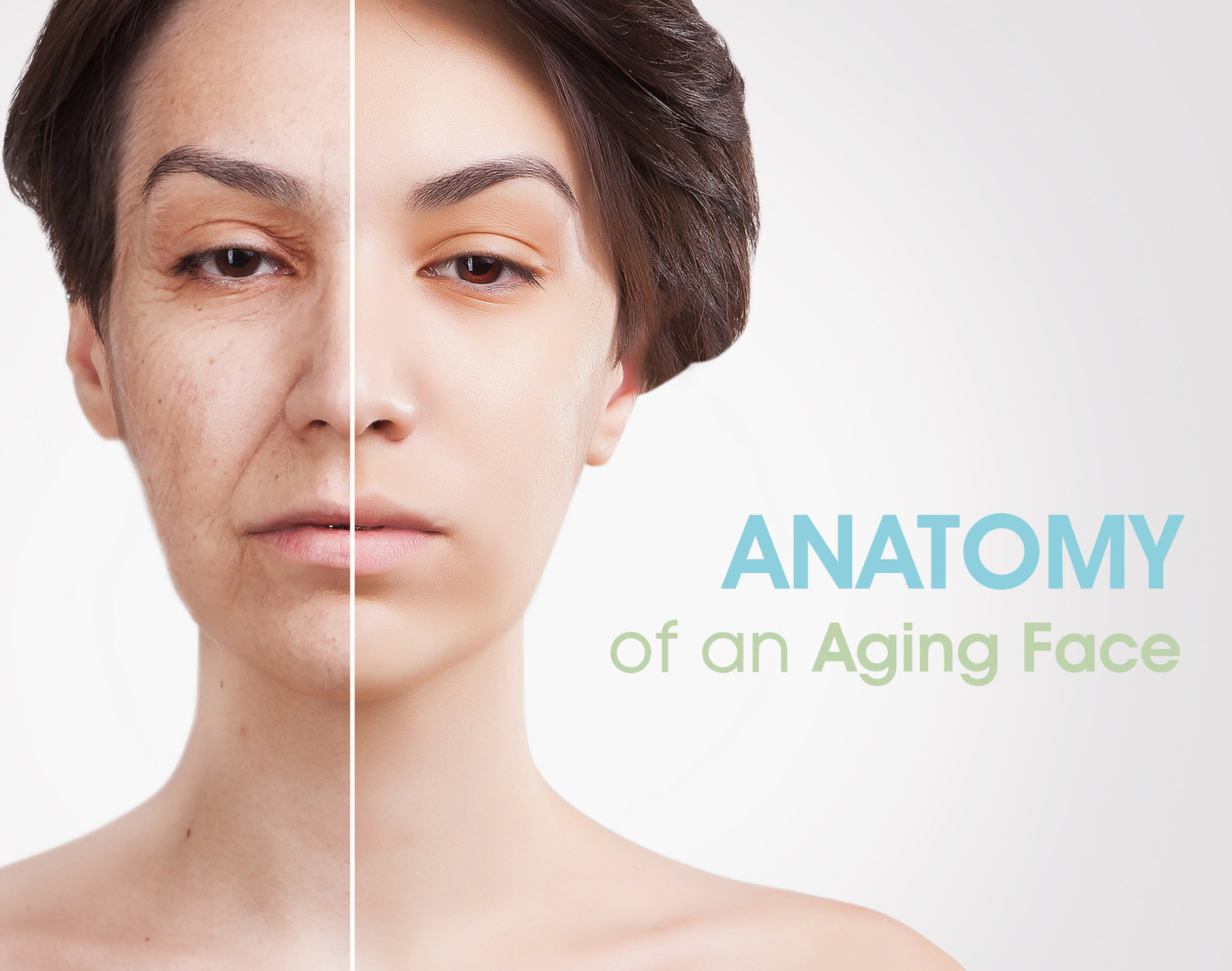 The Anatomy of an Aging Face — Skin MD - Dermatologist in Ortigas, Pasig