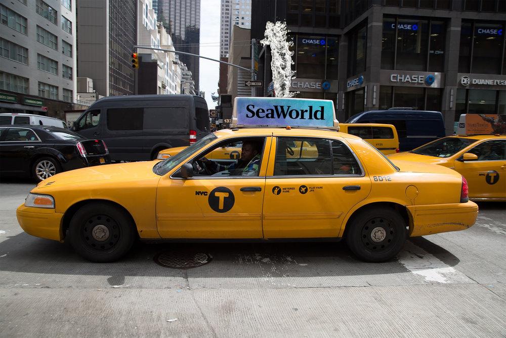 taxi_topper.jpg